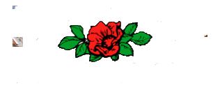 Nilsson's Plantskola logo